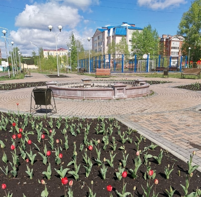 Северчан просят выбрать общественные пространства, которые будут благоустроены в 2021 году