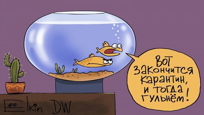 Когда жителям Томской области ждать снятия режима самоизоляции