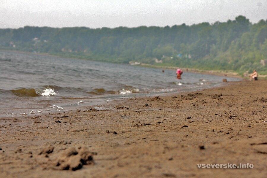 Санитарно-эпидемиологическая ситуация в ЗАТО Северск в мае характеризовалась как удовлетворительная