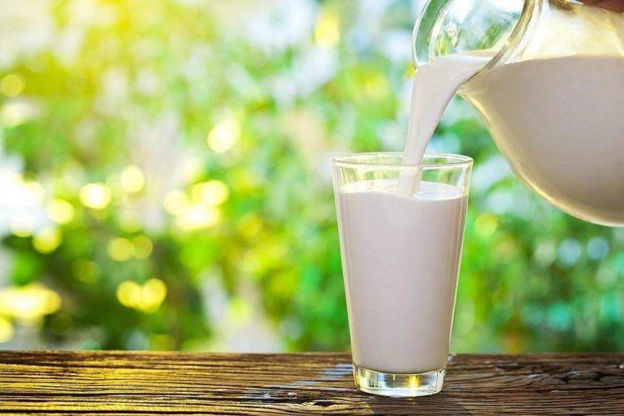 В Томской области растет производство молока