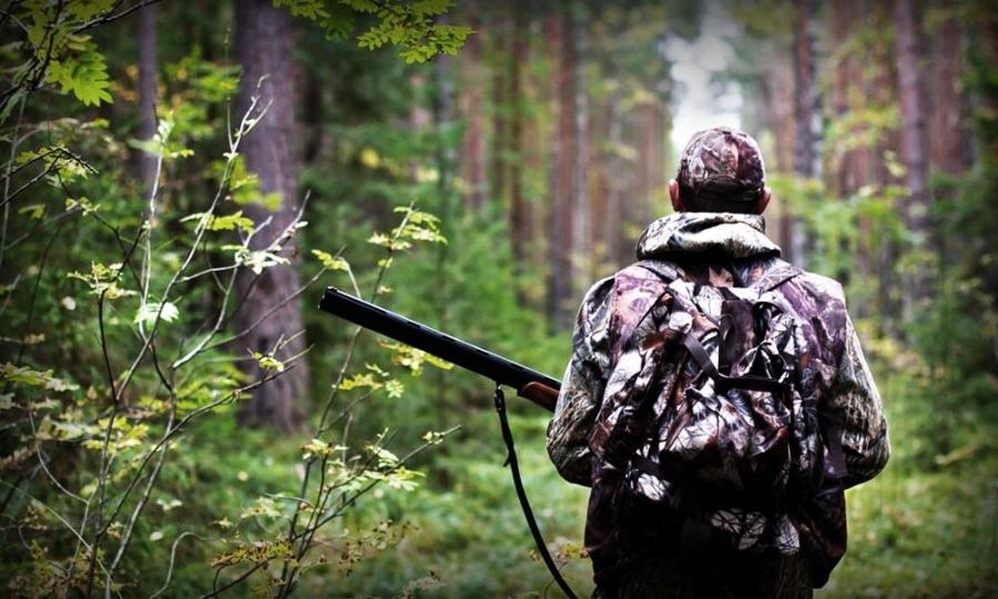 Установлены сроки охоты на территории Томской области в летний, осенний и зимний периоды 2020-2021 годов