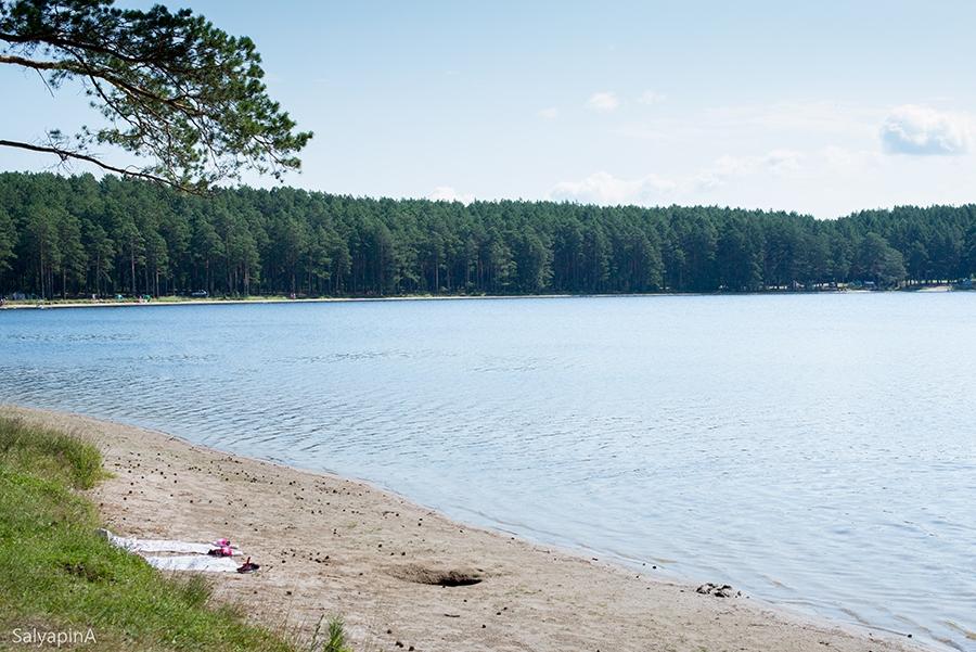 Томские активисты ОНФ добиваются улучшения экологической ситуации на территории озерного комплекса поселка Самусь