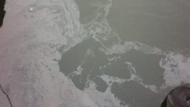 Шамин: источник нефтяных пятен на Томи находится не в Северске