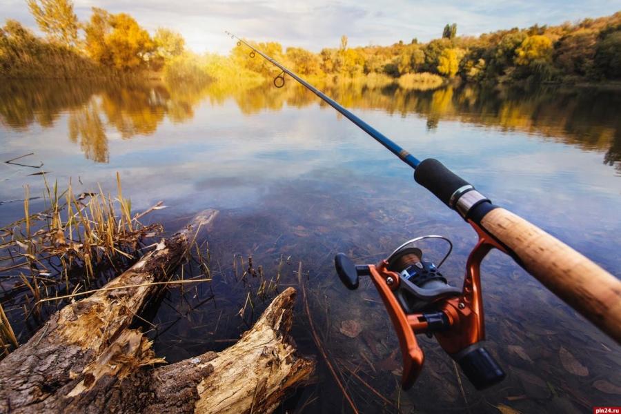 Рыбаки получат возможность сдавать улов на промпереработку