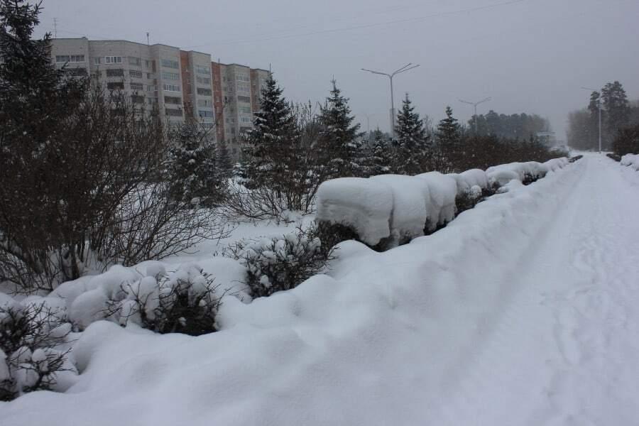 Январь был холоднее. А значит дороже