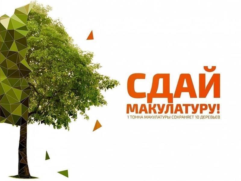 135 тонн макулатуры собрали школьники Томска и Северска в ходе весенней экоакции «Спаси дерево»