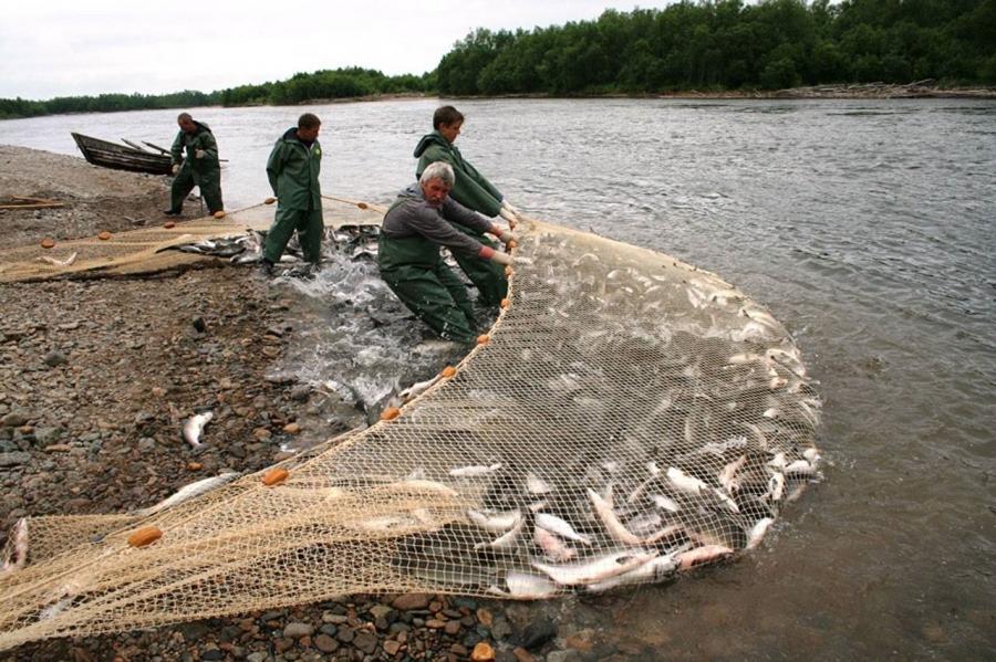 Рыбная ловля запрещена в некоторых районах Томской области с 15 сентября