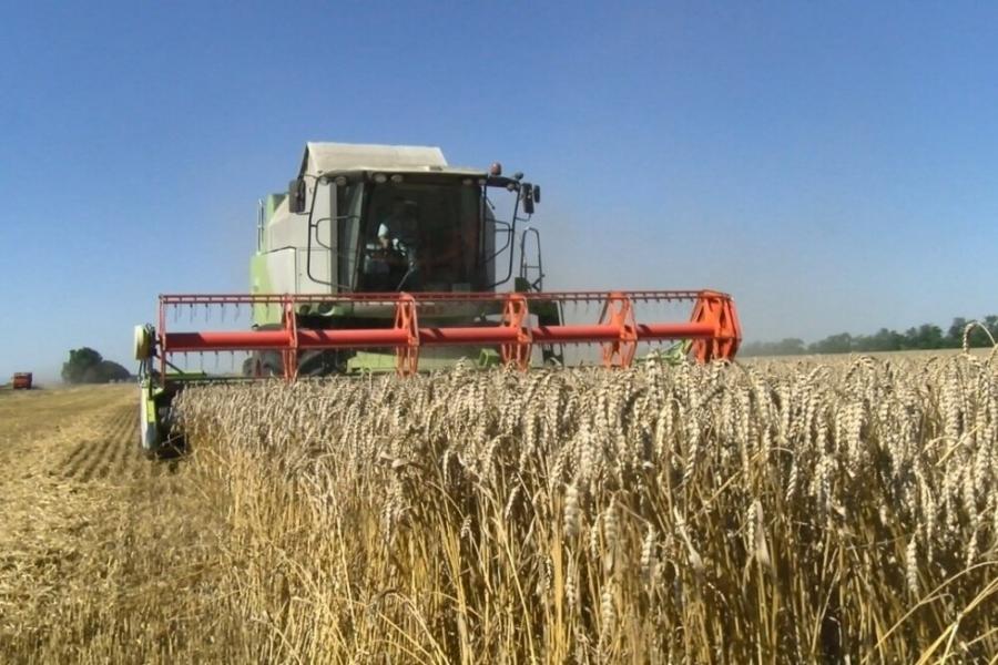 В Томской области убрано более 60% урожая